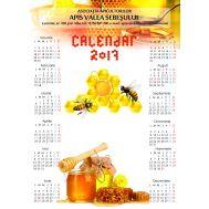 Calendar perete 12 luni 2019 personalizat